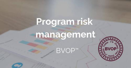 Program Risk Management and Projects Risk identification
