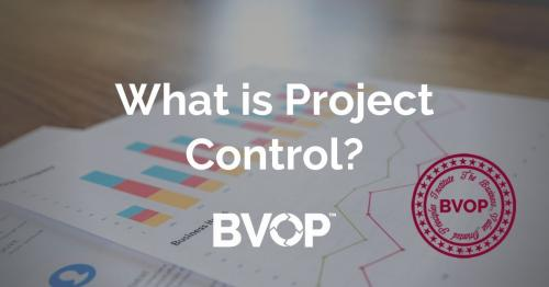 What are Project control, Project Controller and Project controls?
